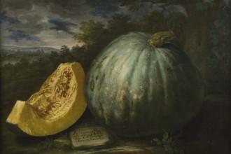 A painting by Bartolomeo Bimbi